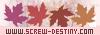 SCREW DESTINY